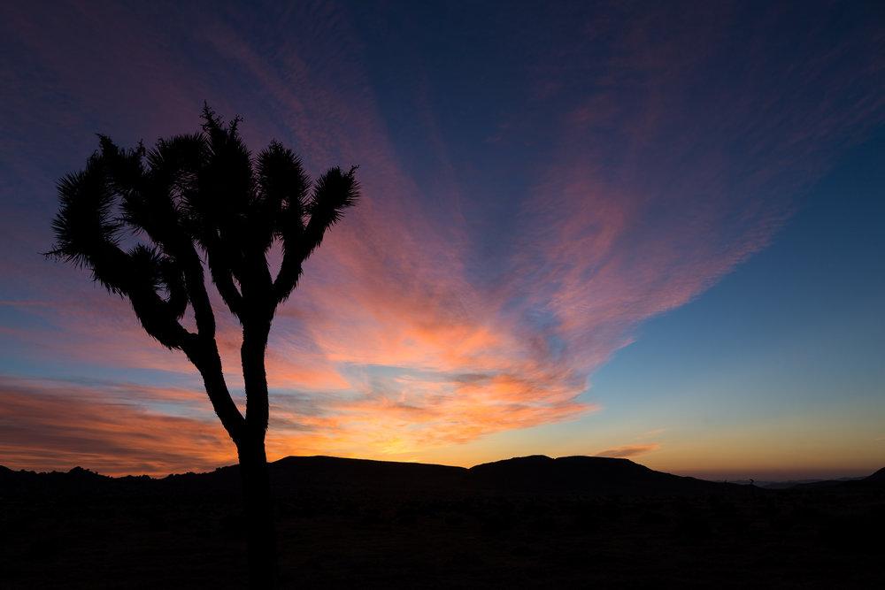 Sunrise in Pioneertown, California