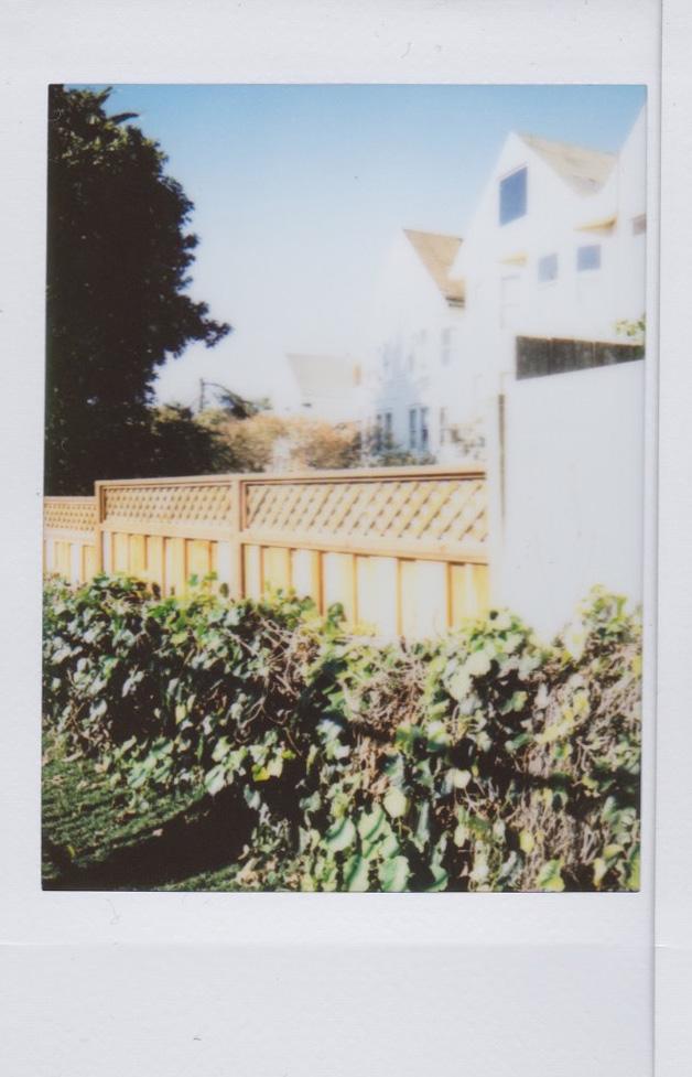 FriSat_Polaroid.jpg