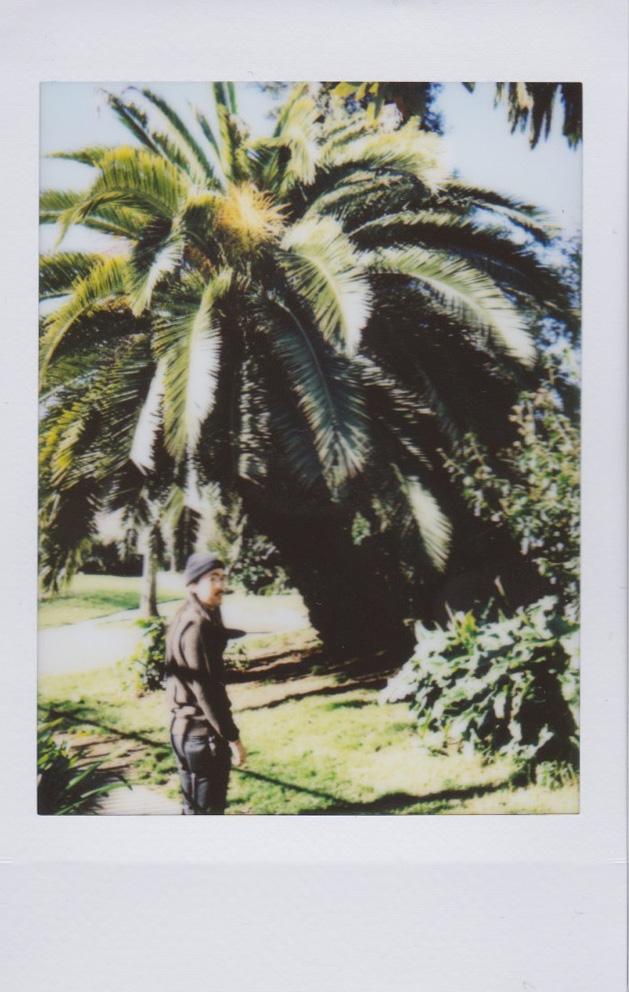FriSat_Polaroid 5.jpg