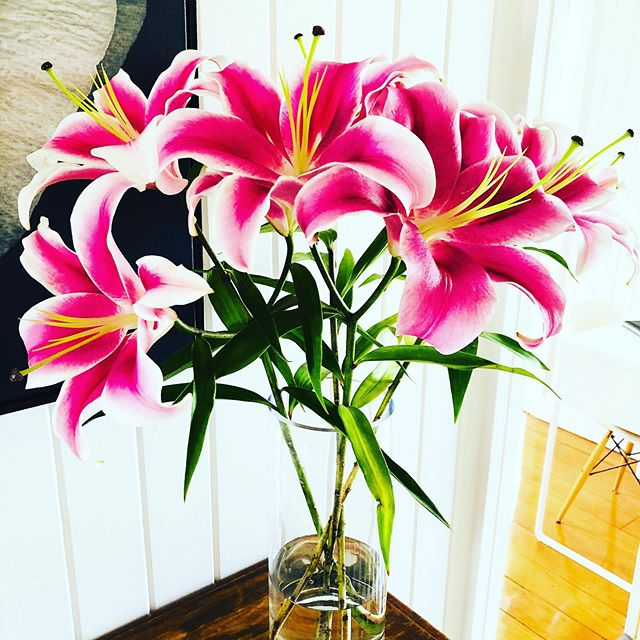 Happy Hump Day! 🌸 #Simplify #propertystyling #humpday #homestaging #freshflowers #kitchendecor #queenslander #pink #brisbanepropertystyling