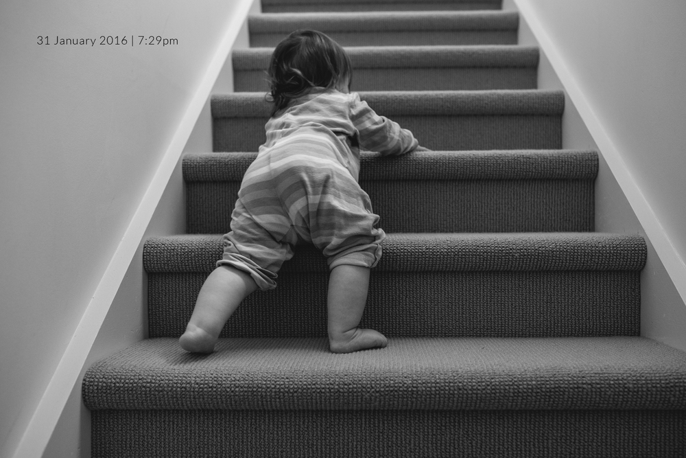 baby-climbing-stairs-family-photography-photo-a-day-project-day-31