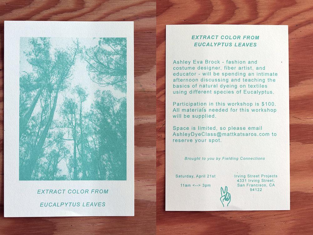 3 Ashley Eucalyptus Dye v2.jpg