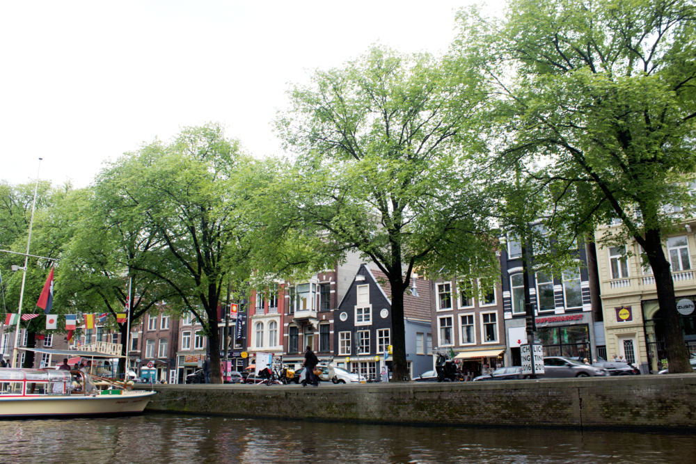 amsterdam-canal-nora-knox.png