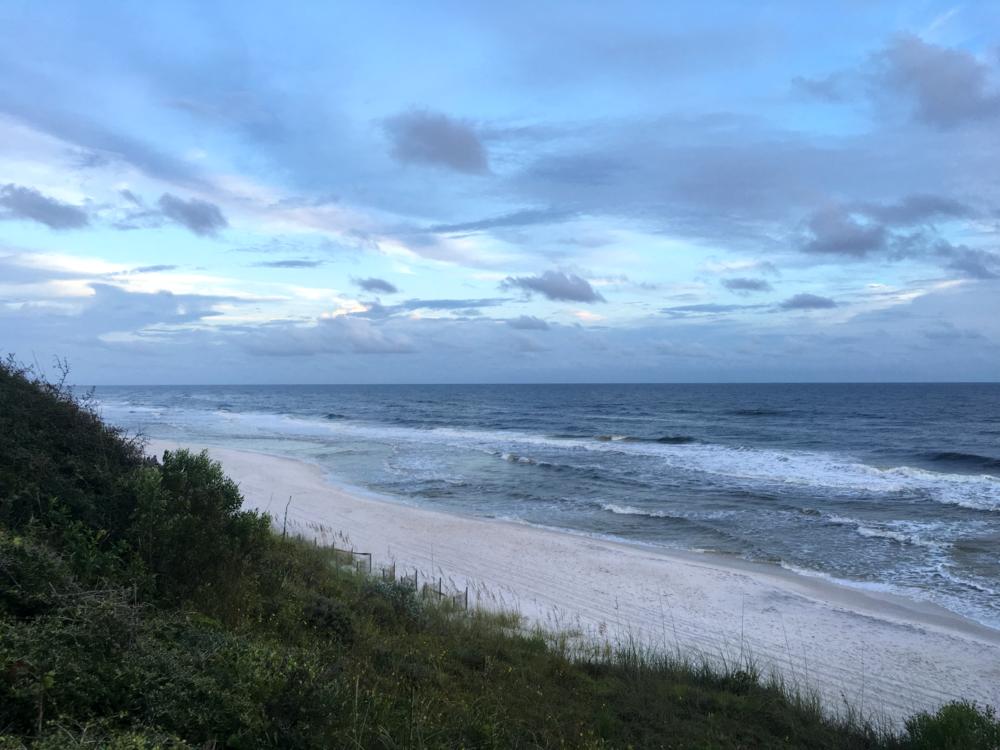30a-beach-florida-nora-knox.png