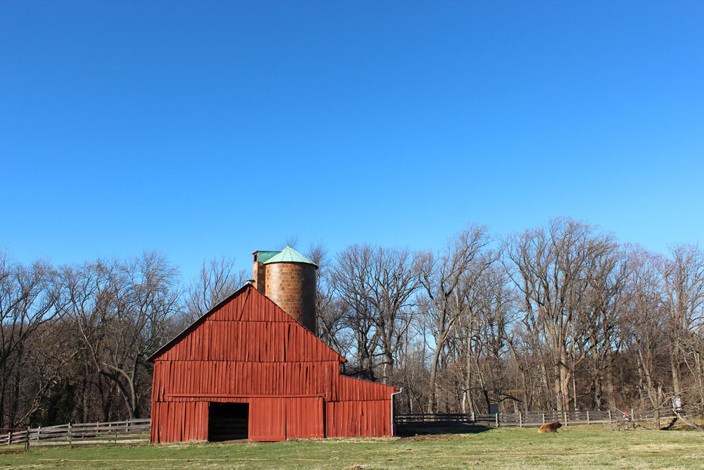 oxon-hill-farm-nora-knox.jpg