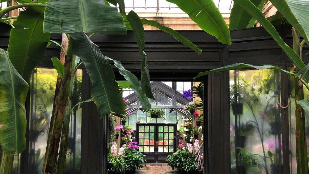 nora-knox-longwood-gardens-greenhouse.jpg