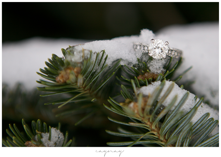 engagement rings. diamond. natural light. pine tree. engagement session. winter. barn wedding. madison wisconsin