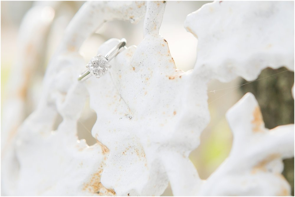 Delafield_Wisconsin_Engagment_Photographer_1505.jpg