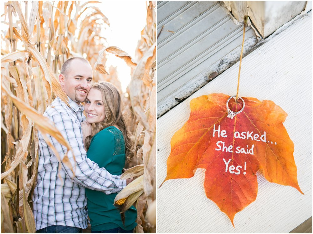 Madison_Wisconsin_Wedding_Photographers_Country_Fall_Engagement_Session_1899.jpg