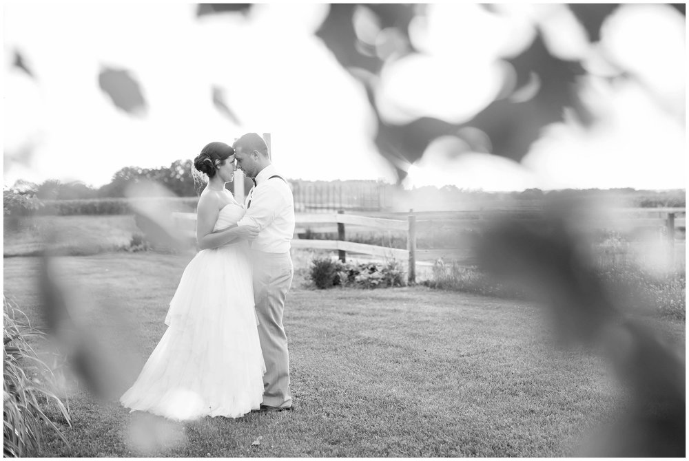 Schusters_Farm_Wedding_Deerfield_Wisconsin_0167.jpg