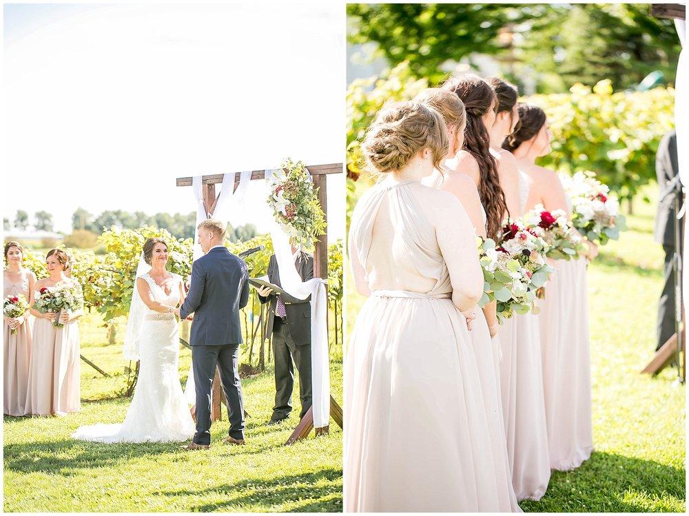 Over_The_Vines_Vineyard_Wedding_Edgerton_Wisconsin_0124.jpg