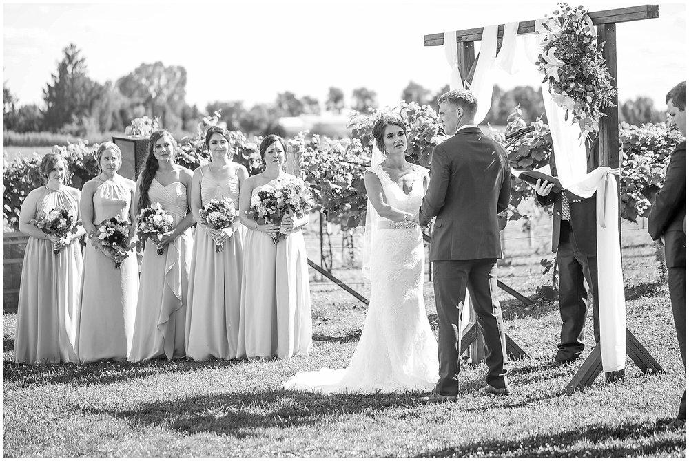 Over_The_Vines_Vineyard_Wedding_Edgerton_Wisconsin_0125.jpg