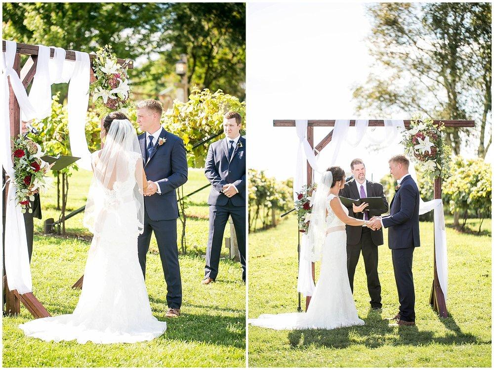 Over_The_Vines_Vineyard_Wedding_Edgerton_Wisconsin_0126.jpg