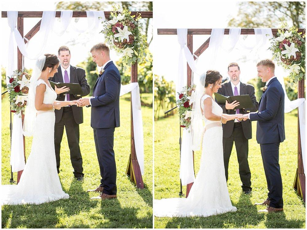 Over_The_Vines_Vineyard_Wedding_Edgerton_Wisconsin_0127.jpg