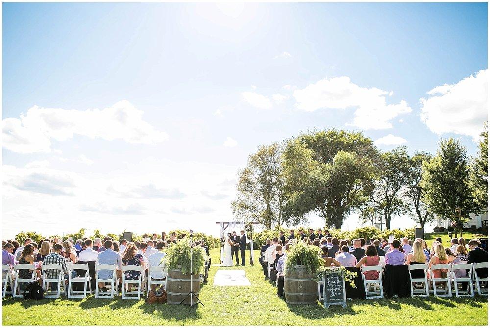 Over_The_Vines_Vineyard_Wedding_Edgerton_Wisconsin_0128.jpg
