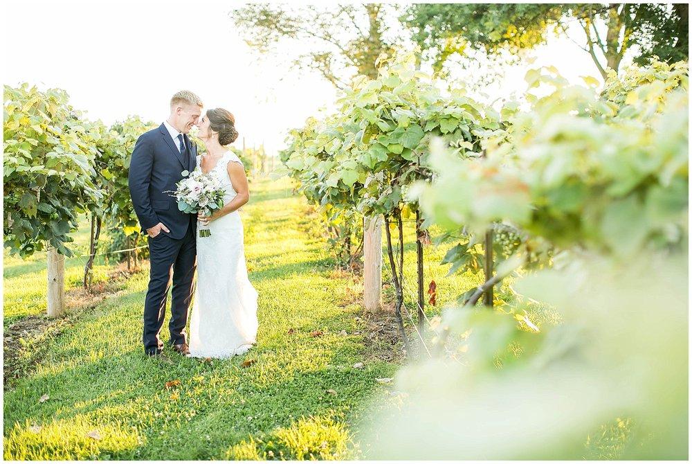 Over_The_Vines_Vineyard_Wedding_Edgerton_Wisconsin_0149.jpg