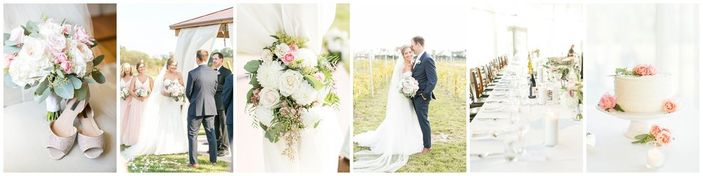 Madison_wisconsin_wedding_venues_0740.jpg