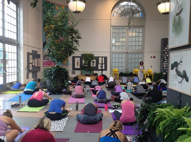 Come flow with us this Saturday from 10:30-11:30 am at the @usbotanicgarden #practicewithlove #popupyoga #WithLoveDC #spreadlovedc