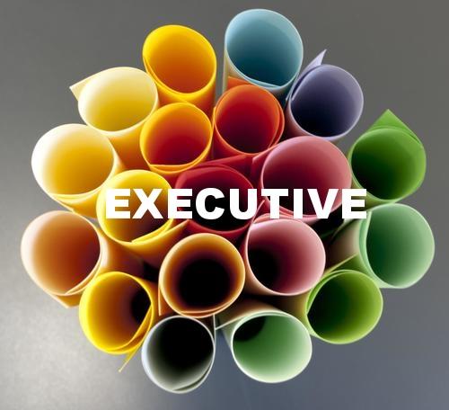 resume revamp executive natasha ferguson