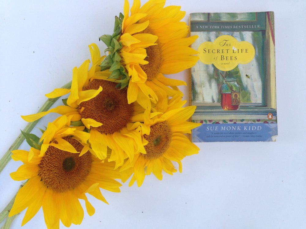 Secret Life of Bees Book Review