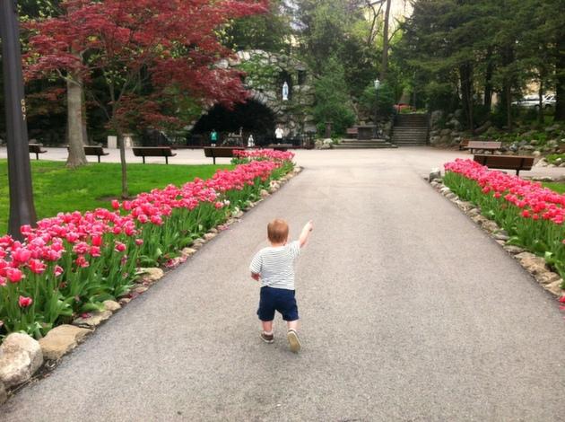 toddler-notre-dame-grotto.JPG