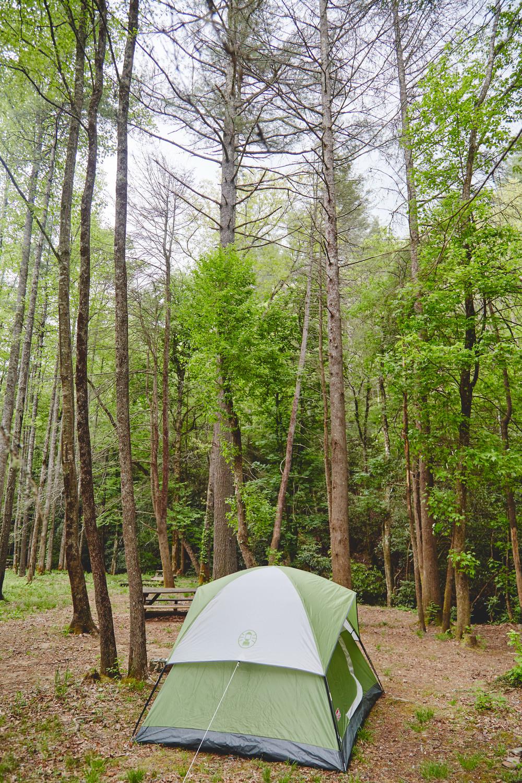 Helen_Georgia_2014_Camping_537.jpg