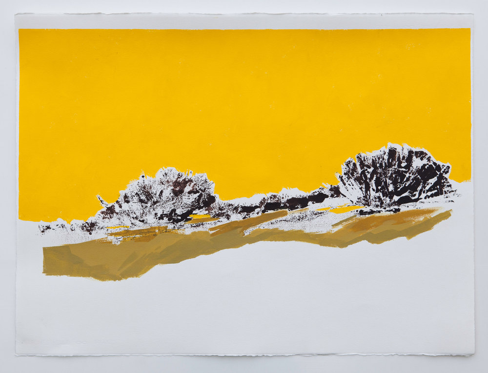 Yellow Sky Landscape  - 2014 -   Acrylic and mixed media on cotton, rag paper - 22 x 30 inches /  56 x 75 cm (Framed - White box frame)