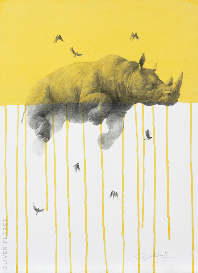 Rhino - Journey No 3  - 2016 - Charcoal and watercolour on paper - 28x20 in / 70x50 cm