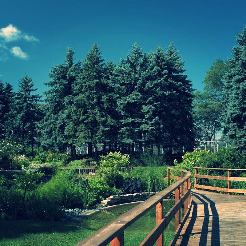 jardin_du_canada.jpg