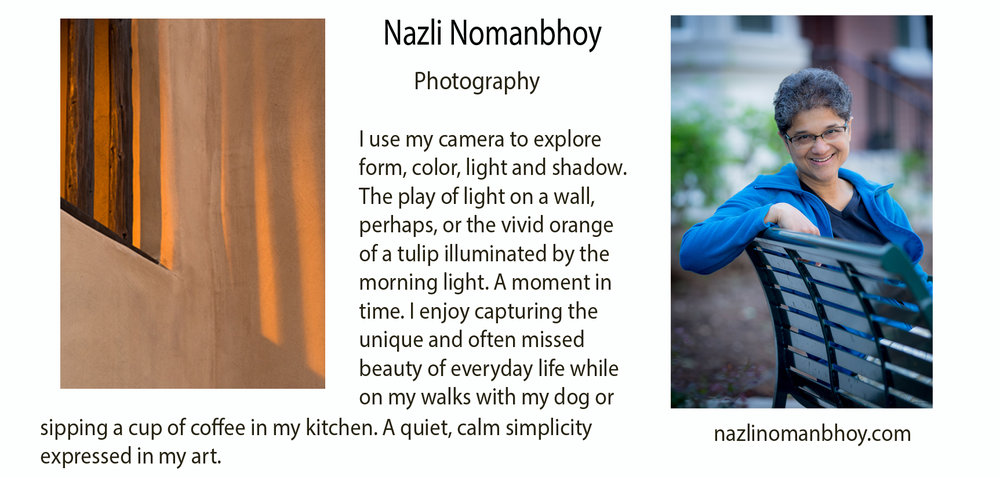 nazli profile for FB.jpg