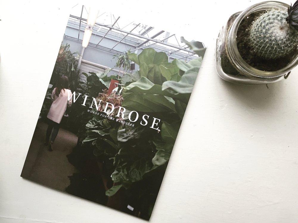 Windrose Magazine Issue 2 with Cactus PHOTO.JPG
