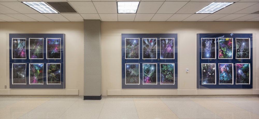 Installation View / Terminal 2 / San Diego International Airport Plexiglass Containers 7x7'  each image 20x30""