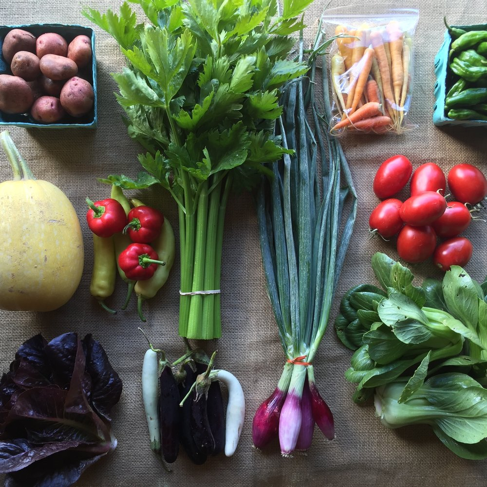 Sample spring CSA full share.