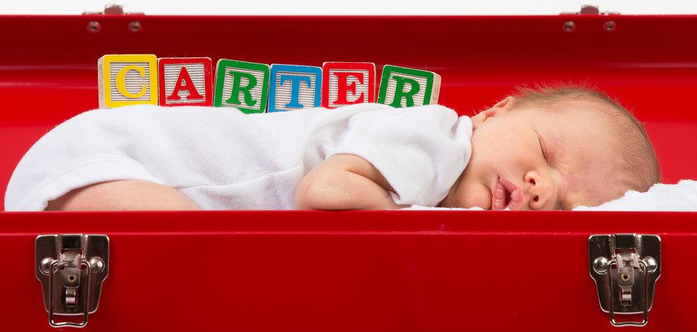 Carter-banner.jpg