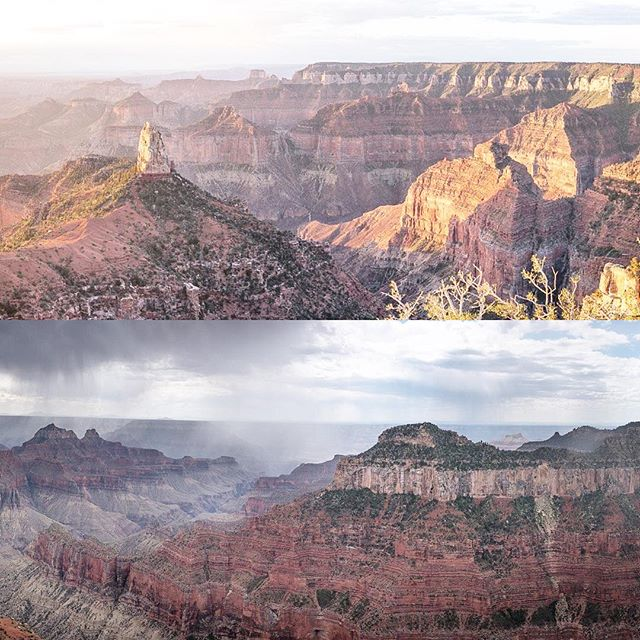 Have you been to the North Rim of the Grand Canyon? More remote, more trees, less developed, and less tourists. And you can even see the crazy Kaibab squirrels that you (forgot you) learned about in high school biology! Photos by Josh, who finally got an Instagram account! Follow him at @just_west_of_here #parktopark2016