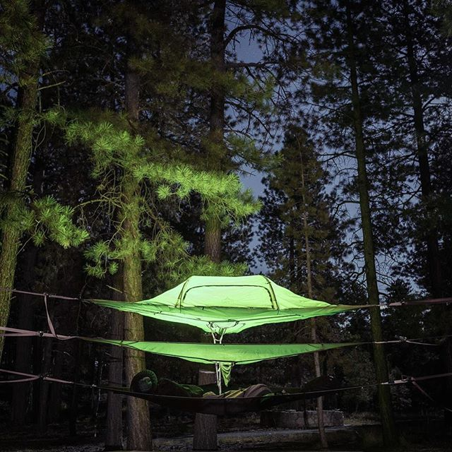 We had to sleep on the ground in Zion, so we were thrilled with the trees in the North Rim campground. After four weeks of @tentsile tent camping, we wholeheartedly endorse the amazingly comfortable Tentsile tents. Get your own #floatingtent at tentsile.com with the discount code BallardFamily10. (And then get some #luminoodle lights from @powerpractical.) Photo by @just_west_of_here