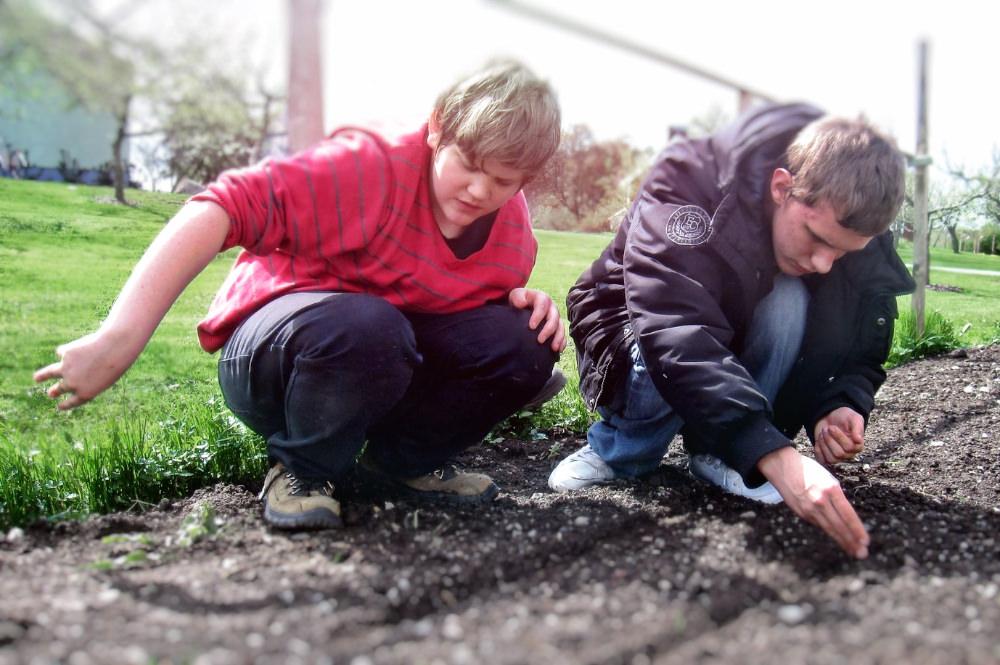 Att odla något och se det växa upp, från ett litet frö till en färdig växt, kan varamagiskt.