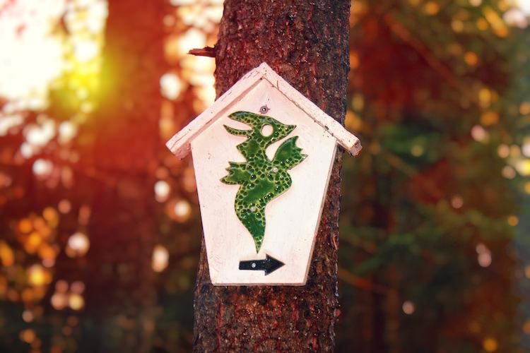 Vi följer Drakstigens skyltar på träden till de olika modproven.