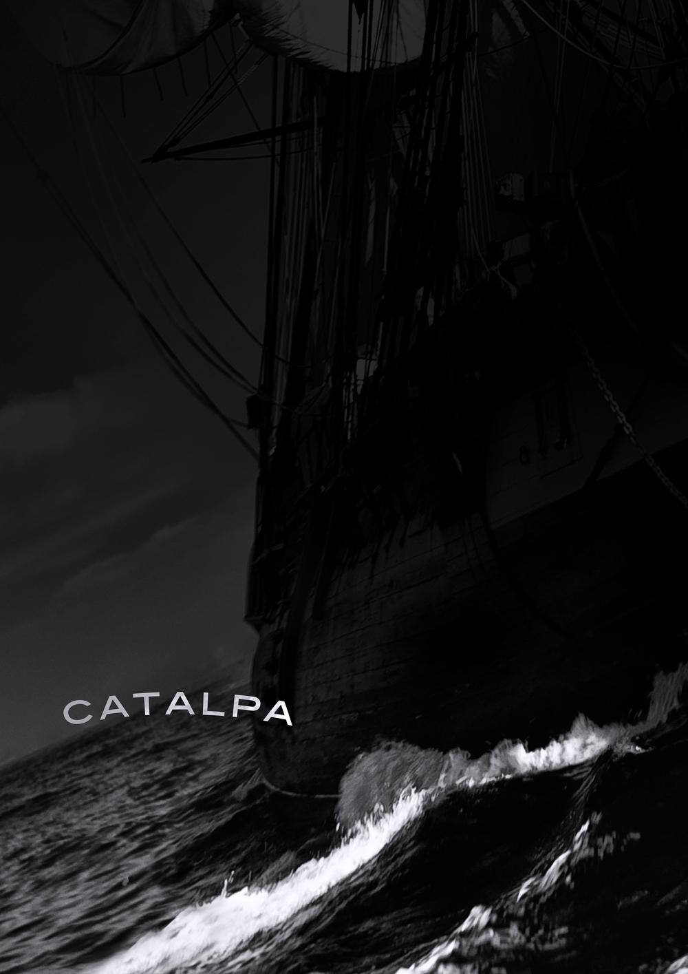 CATALPA-DRAFT.jpg