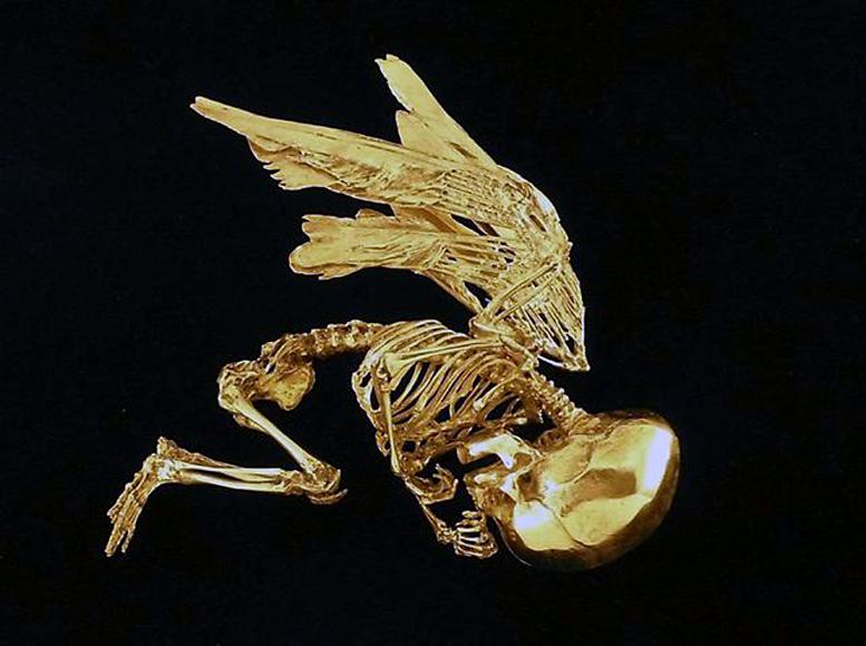 "Damien Hirst ""Cupid's Lie"""