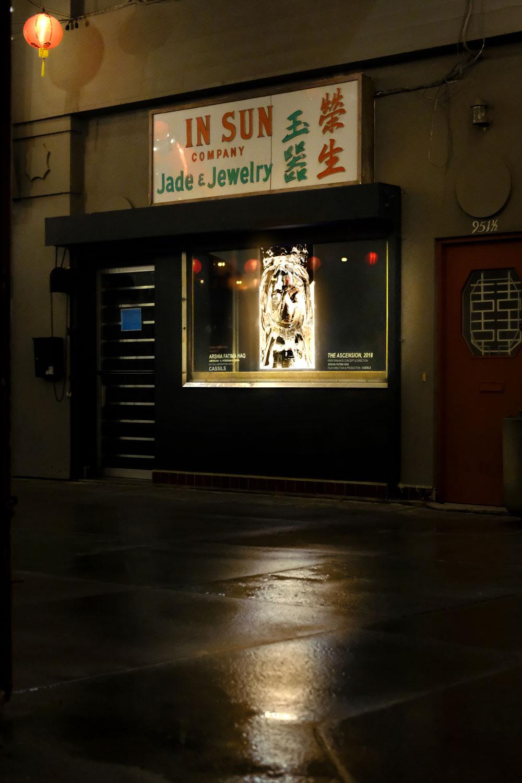 ARSHIA-FATIMA-HAQ-THE-ASCENSION-Film Installation_R01_02.jpg