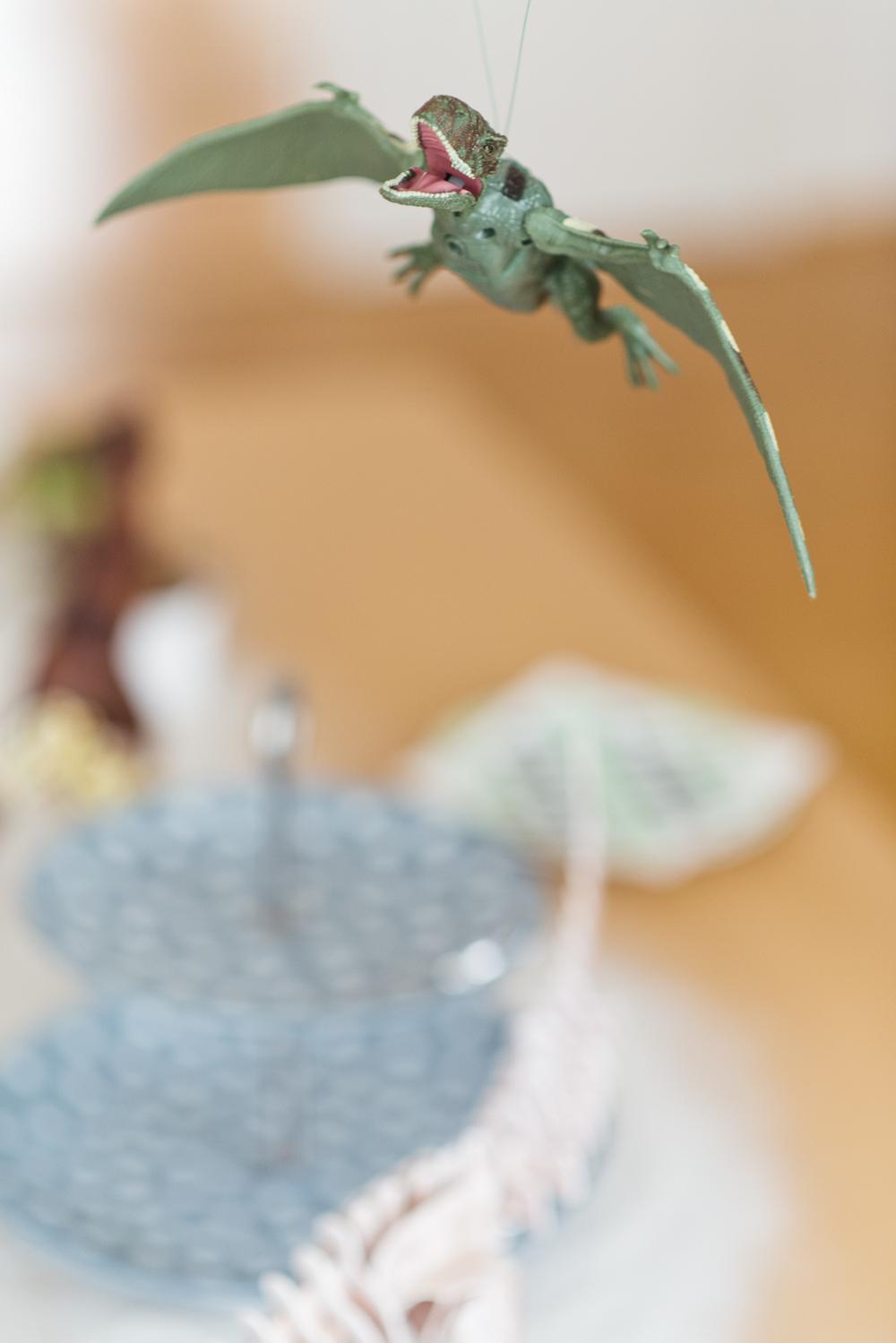 Succulent Cupcakes-1.jpg