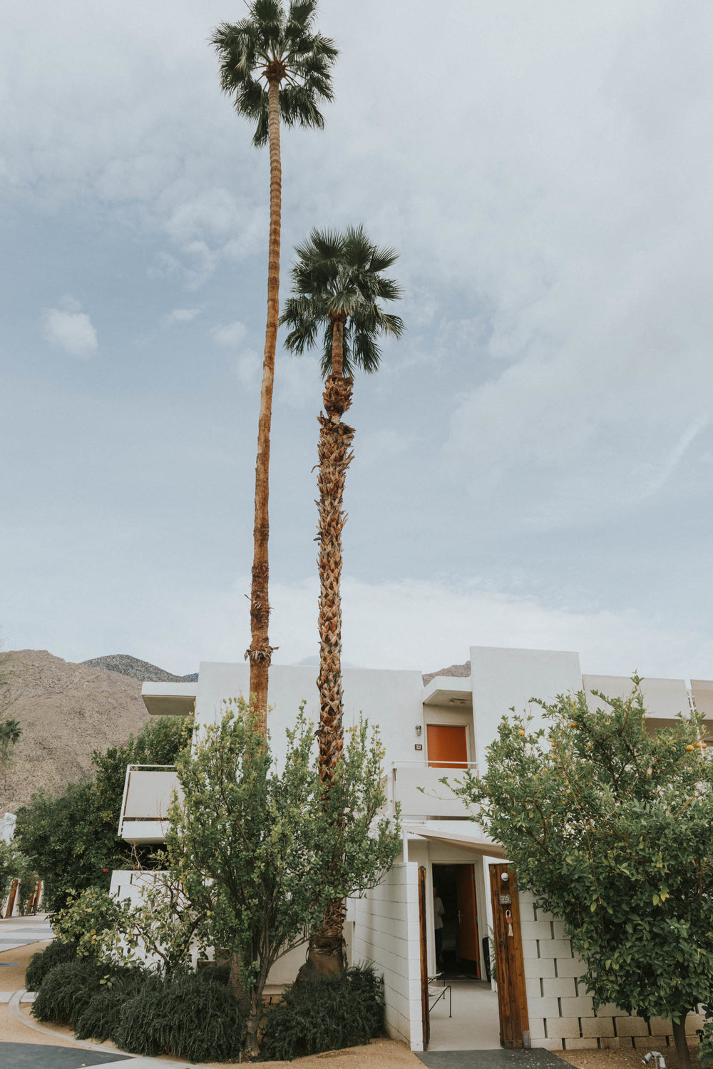 belle&sassAce Hotel Palm Springs Wedding0001.jpg
