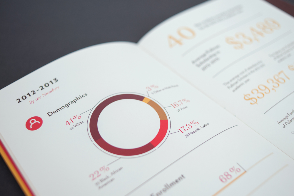 2013 Pullman Foundation Annual Report