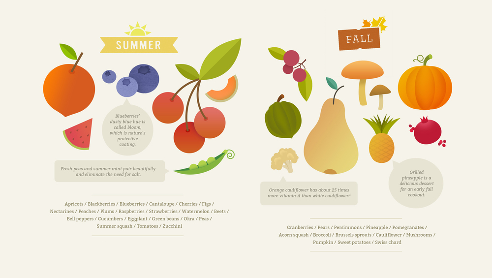 Infographic_Food_Seasonal_Guide_McQuade_Design2.jpg