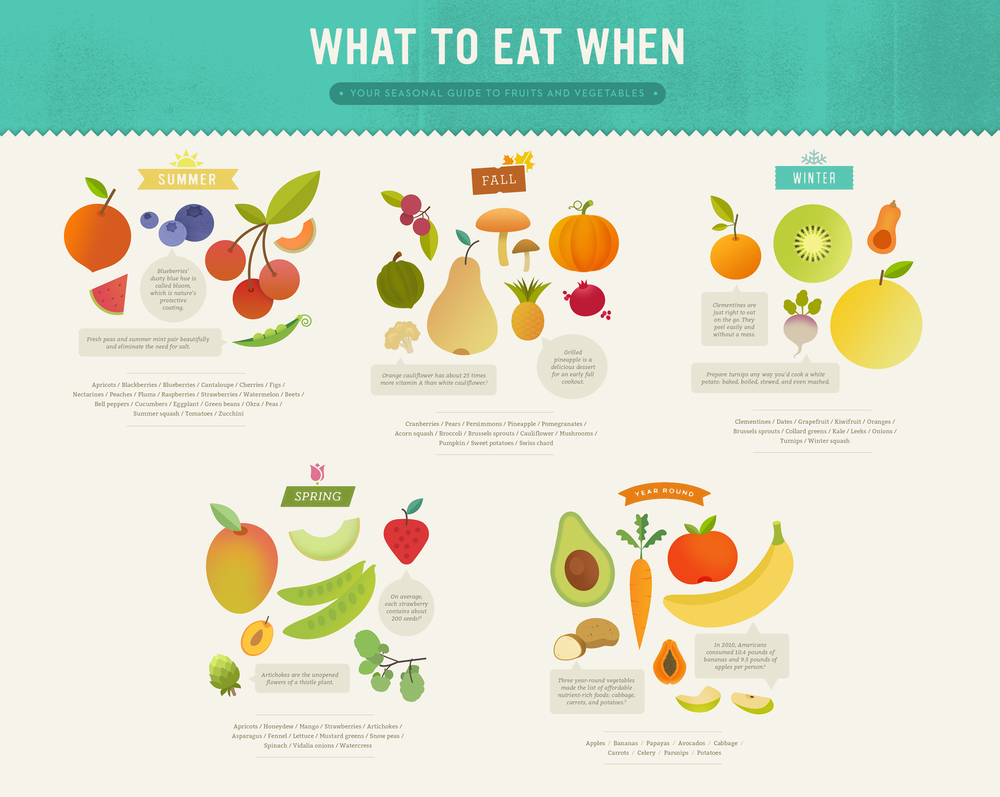 Infographic_Food_Seasonal_Guide_McQuade_Design.jpg