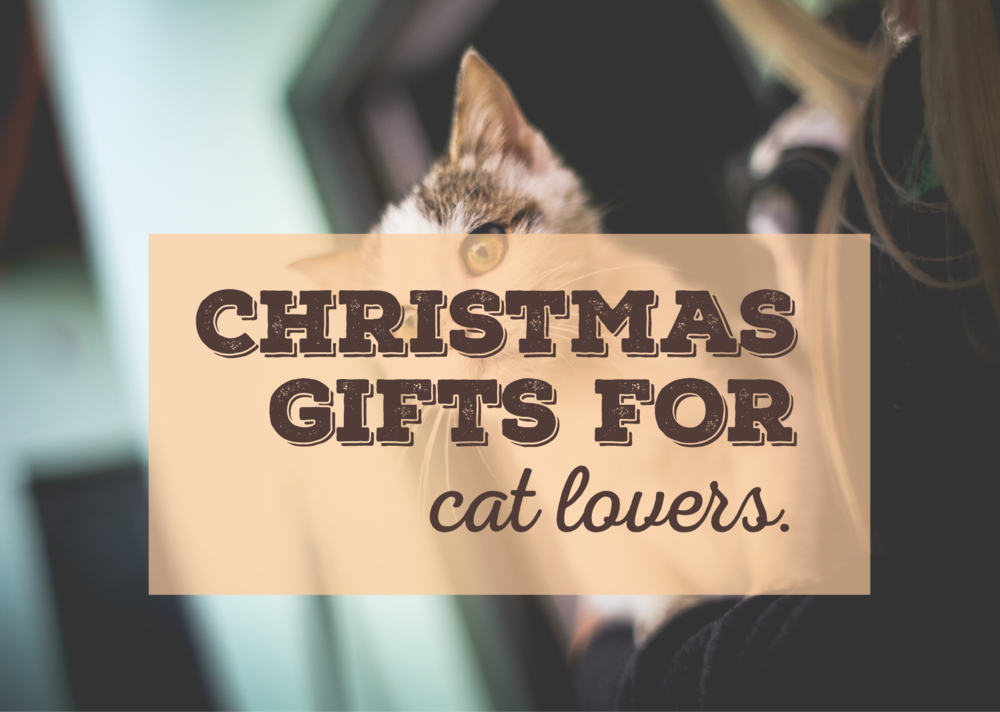 The Ultimate Christmas Gift Ideas for Cat Lovers.