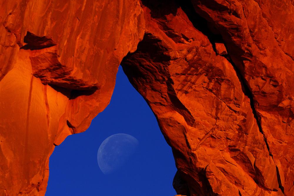 moonundernorth.jpg