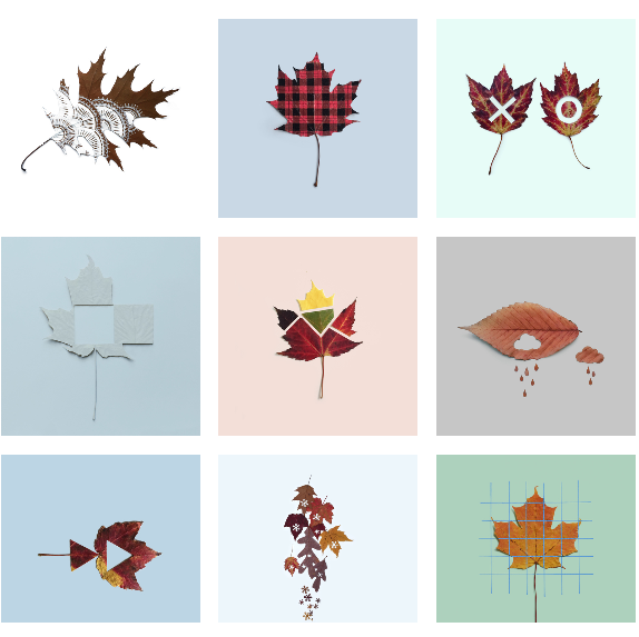 kristen_meyer_salvage_design_leaf_chronicles