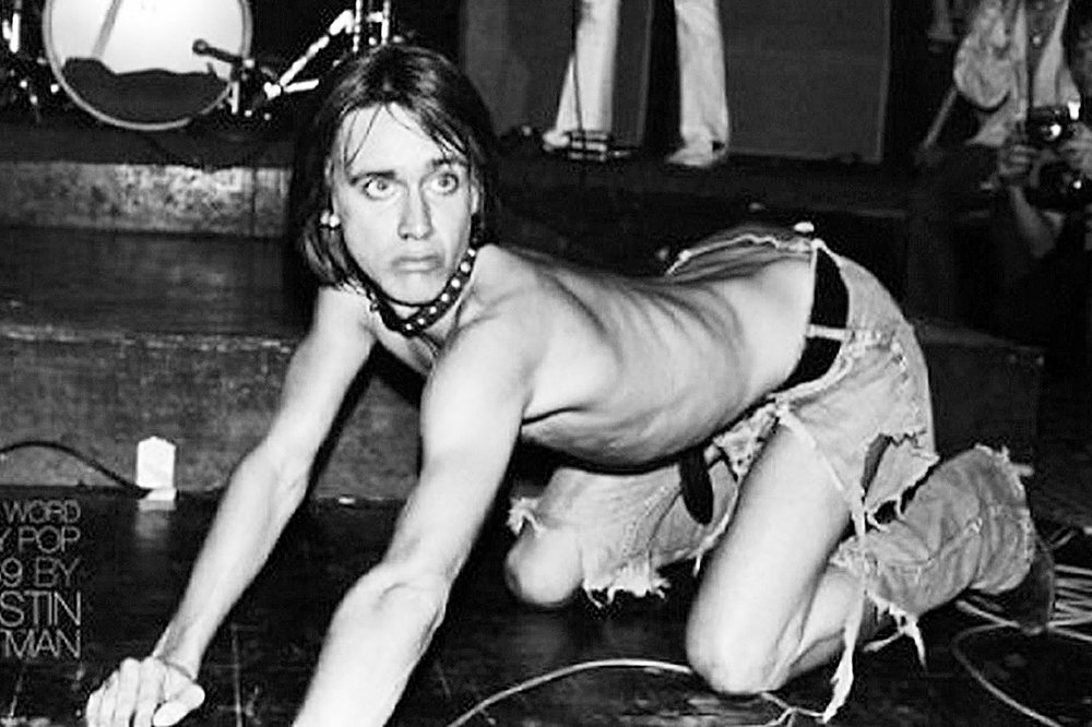 The Stooges 1969     I Wanna Be Your Dog